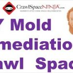 Mold In Air Ducts