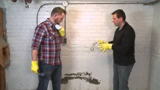 Basement Mold Removal Cost Weir