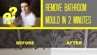 Black Mold Removal Cost Bear Creek