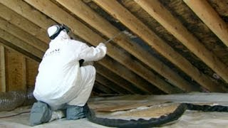 Home Mold Removal Cost Weir