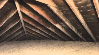 House Mold Inspection Volente