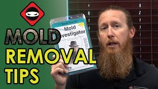Mold Detection Services Buchanan Lake Village