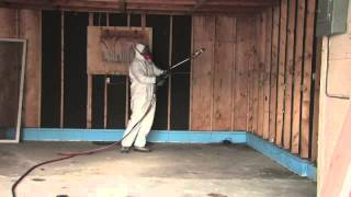 Mold Inspection And Remediation Volente