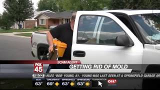 Mold Removal Services Hays