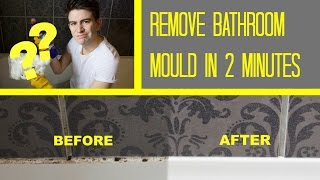 Mold Restoration Services Driftwood