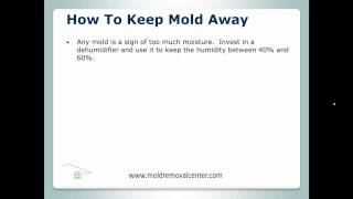 House Mold Removal Niederwald