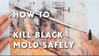 Mold Treatment McDade