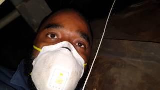 House Mold Remediation Jarrell