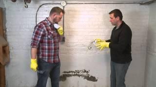 Mold Restoration Services Creedmoor